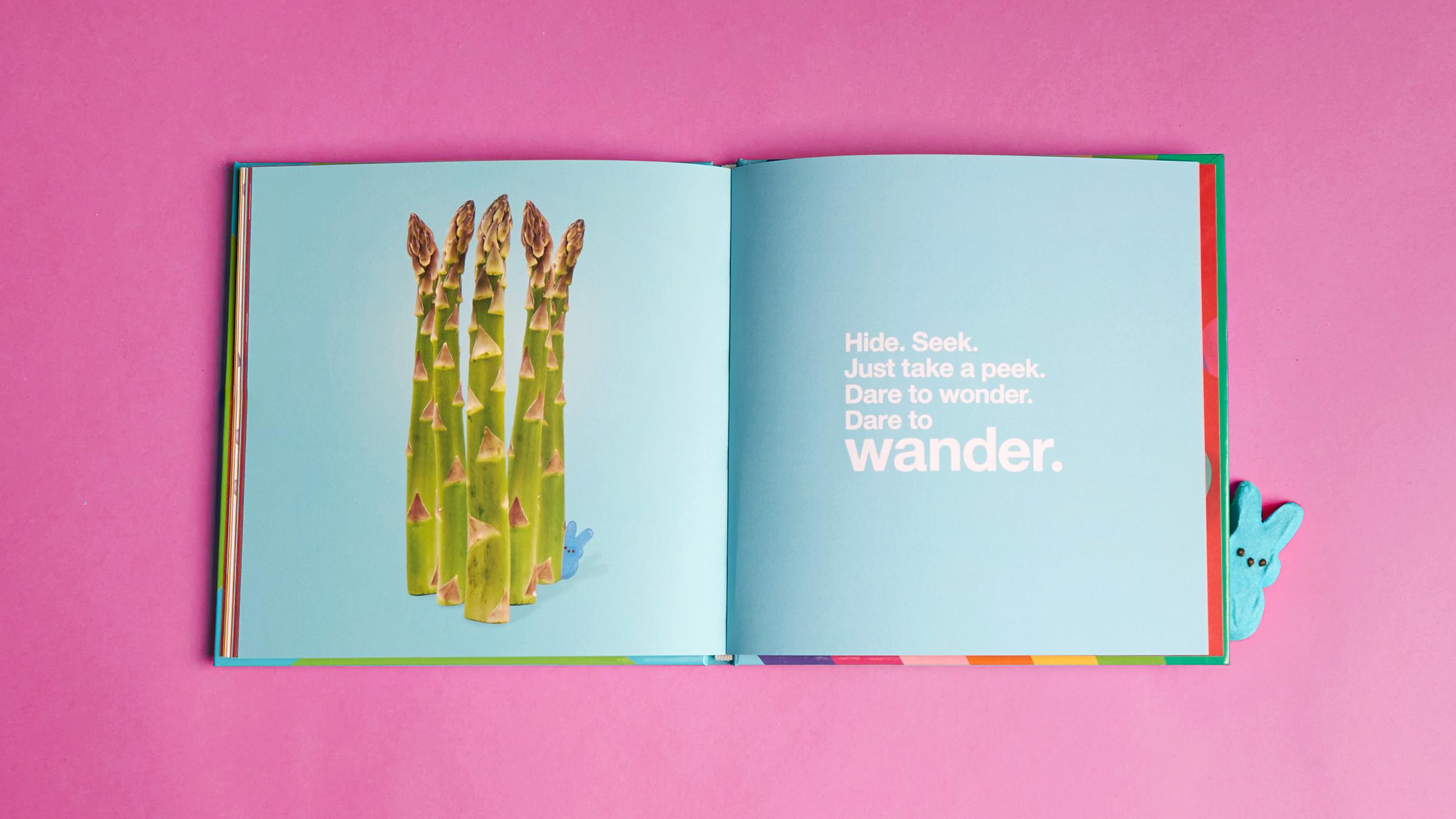 Target-Easter-Book0197_pink